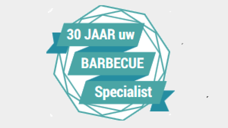 barbecue expert gasbarbecue expert